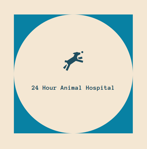 24 Hour Animal Hospital Ashburn, VA 20146